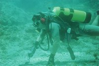 Diving for artifacts and sunken treasure in the Caribbean